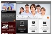 Шаблон S5 Business Pro